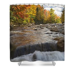 Gale River - White Mountains New Hampshire Shower Curtain by Erin Paul Donovan