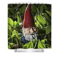 Garden Gnome No 0065 Shower Curtain by Randall Nyhof