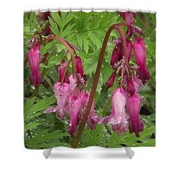 Garden Rain Drops Shower Curtain