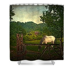 Gate To The Past Shower Curtain by Lianne Schneider