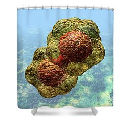 Geminivirus Particle Shower Curtain