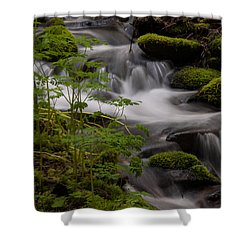 Gently Falling Shower Curtain by Mike Reid
