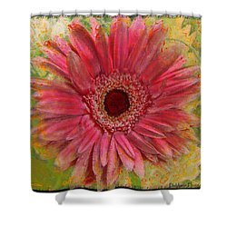 Gerber Photoart Shower Curtain