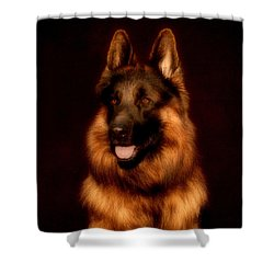 German Shepherd Portrait Shower Curtain