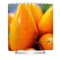 Shower Curtain featuring the photograph Ghost In The Pepper by Chriss Pagani