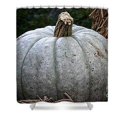 Ghost Pumpkin Shower Curtain by Susan Herber