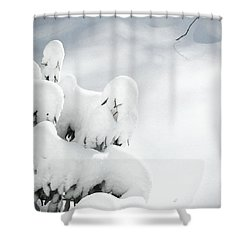 Shower Curtain featuring the photograph Ghostly Snow Covered Bush by Pamela Hyde Wilson
