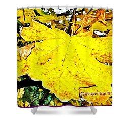Giant Maple Leaf Shower Curtain