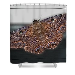 Shower Curtain featuring the photograph Giant Moth by DigiArt Diaries by Vicky B Fuller