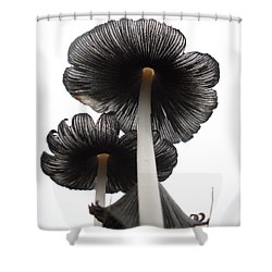 Giant Mushrooms In The Sky Shower Curtain