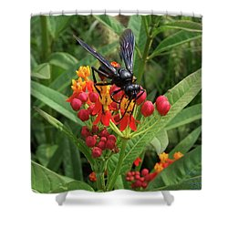 Giant Wasp Shower Curtain