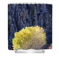 Gilded Autumn Shower Curtain