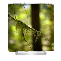 Gilded Branch Shower Curtain by Mike Reid
