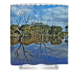 Shower Curtain featuring the photograph Glass Lake by Stephen Mitchell