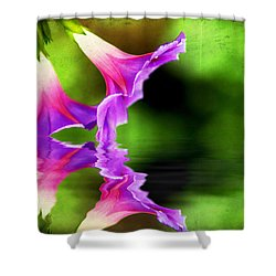 Glory Reflection Shower Curtain by Darren Fisher