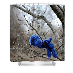 Glove Lost Shower Curtain by Lisa Phillips
