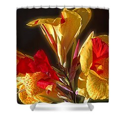 Shower Curtain featuring the photograph Glowing Iris by DigiArt Diaries by Vicky B Fuller