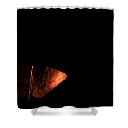 Glowing Lime Limelight Shower Curtain by Ted Kinsman