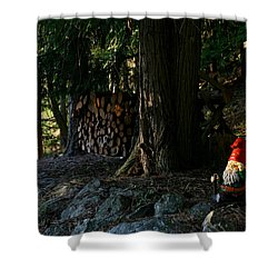Gnome And The Woodpile Shower Curtain
