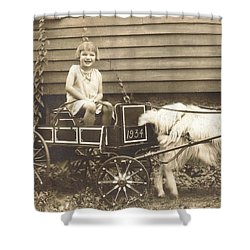 Shower Curtain featuring the photograph Goat Wagon by Bonfire Photography