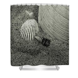God's Little Treasures Shower Curtain by Trish Tritz
