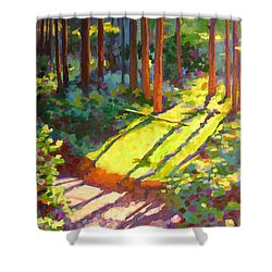 Gold Creek Trail Shower Curtain by Mary McInnis
