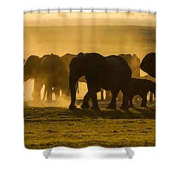 Gold Dust Gathering Shower Curtain