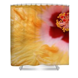 Shower Curtain featuring the photograph Golden And Crimson Hibiscus by Donna Smith