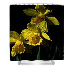 Golden Bells Shower Curtain by Lois Bryan