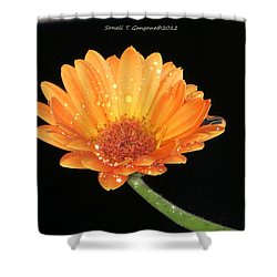 Golden Droplets Shower Curtain