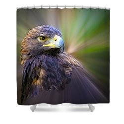 Golden Eagle Fade Shower Curtain by Steve McKinzie