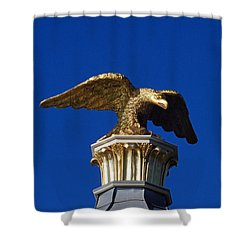 Golden Eagle Shower Curtain by Lisa Phillips