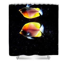 Golden Fish Reflection Shower Curtain