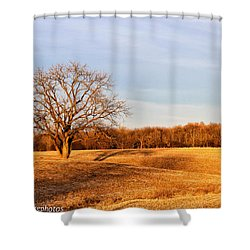 Shower Curtain featuring the photograph Golden Hour Shadows by Rachel Cohen