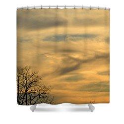 Golden Hue Shower Curtain by Bonnie Myszka