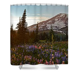 Golden Meadows Of Wildflowers Shower Curtain by Mike Reid