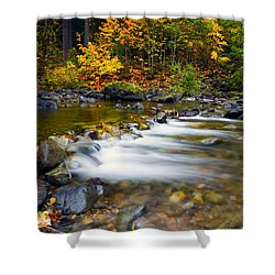 Golden Shores Shower Curtain by Mike  Dawson