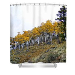 Golden Stand Shower Curtain by Dorrene BrownButterfield