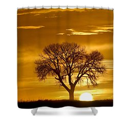Golden Sunrise Silhouette Shower Curtain by James BO  Insogna