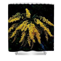 Goldenrod Shower Curtain by Priscilla Richardson