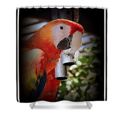 Gong Shower Curtain