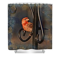 Good Moning Sunshine IIi Shower Curtain by Debbie Portwood