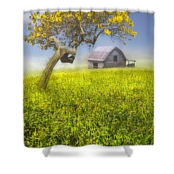 Good Morning Spring Shower Curtain by Debra and Dave Vanderlaan