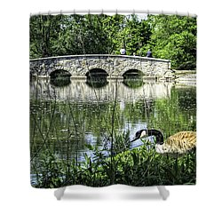 Shower Curtain featuring the photograph Goose And Bridge At Silver Lake by Tom Gort