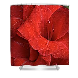Gorgeous Glads Shower Curtain by Susan Herber