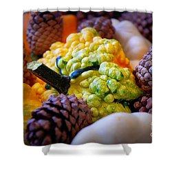 Shower Curtain featuring the photograph Gourds 2 by Deniece Platt
