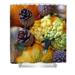 Shower Curtain featuring the photograph Gourds 5 by Deniece Platt