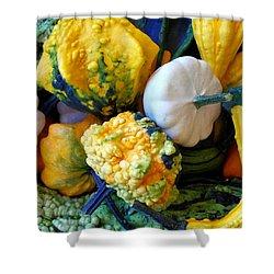 Shower Curtain featuring the photograph Gourds 8 by Deniece Platt