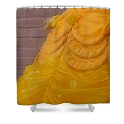Gown Of A Princess Shower Curtain