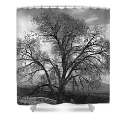 Grand Canyon Life Tree Shower Curtain